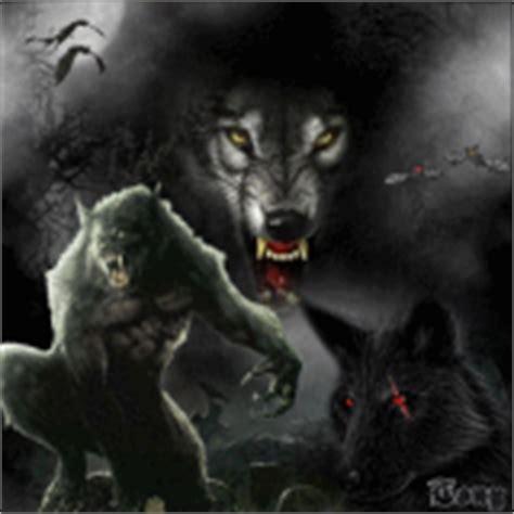 imagenes gif feliz noche hermanita fotograf 237 as imagenes de lobos aullando p 1 de 250
