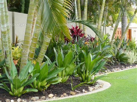 tropical patio design tropical patio plants tropical garden border stock
