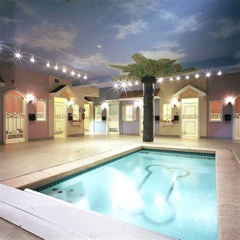 images   dog hotel  pinterest pet resort