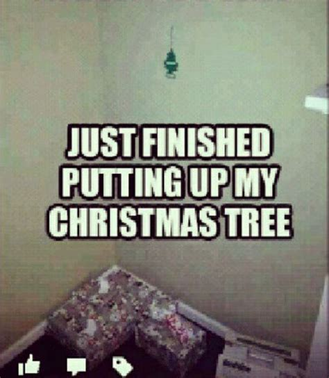 Funny Memes About Christmas - 28 most funny tree meme photos and images of all the time