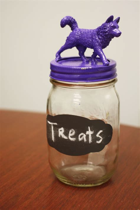 treat jar diy pet treat jar the trupanion
