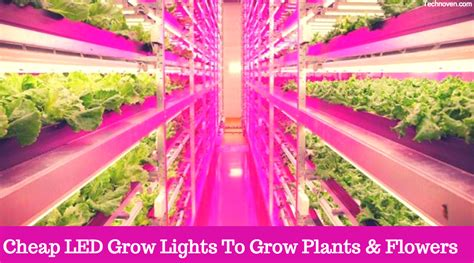 15 Best Cheap Led Grow Lights Of 2018 Amazon Released