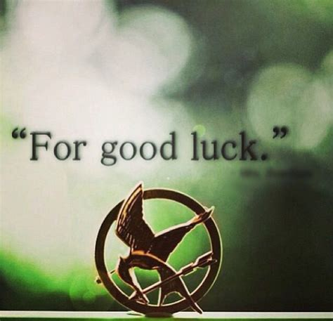 film quotes good luck 99 best hunger games images on pinterest katniss