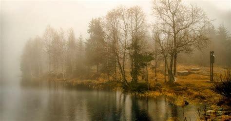 sabato in poesia quot autunno quot di francesco guccini