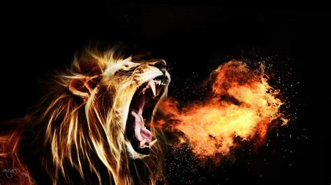 wallpaper hd 1920x1080 lion roaring lion wallpaper 67 images
