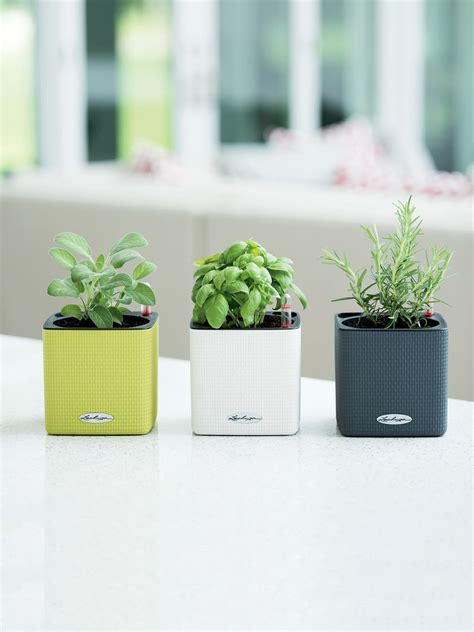 planter indoor self watering indoor herb garden planter herb planter mini cube self watering herb planter