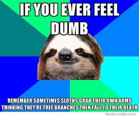Sloth Jokes Meme - best 25 sloth humor ideas on pinterest zootopia sloth