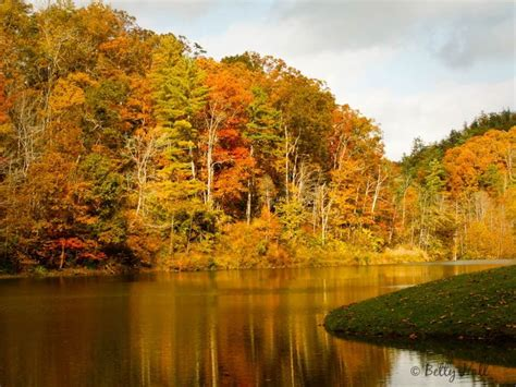 of kentucky colors 92 best images about kentucky pictures on
