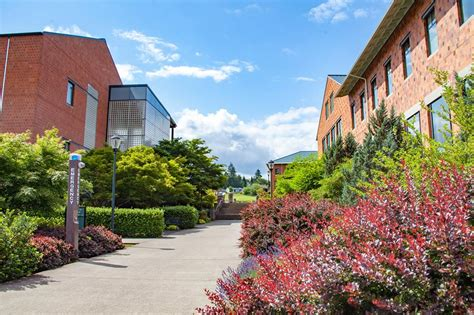 Wsu Mba Vancouver Graduate List by 30 Best Master S In Elementary Education Degrees Top