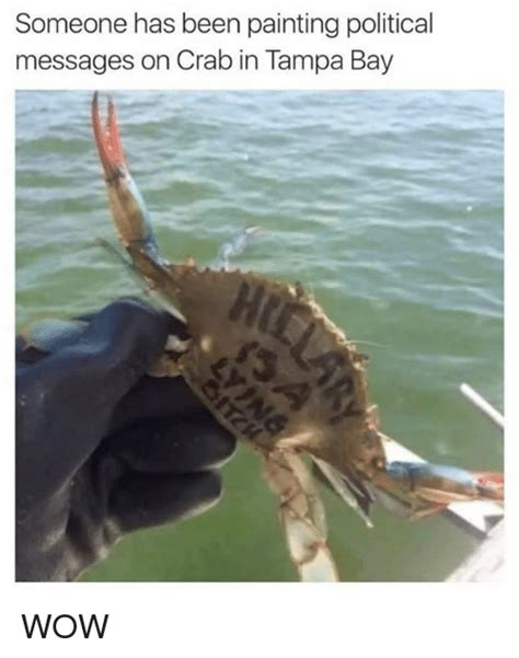 Crab Meme - someone has been painting political messages on crab in