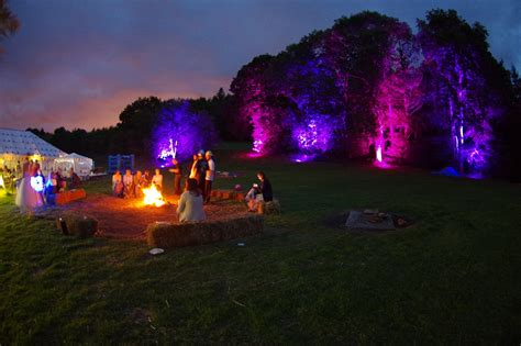 outdoor up lighting for trees outdoor wedding tree uplighting expression events