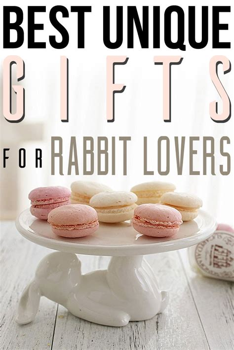 best gifts ideas best unique gifts and gift ideas for rabbit and