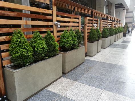 restaurant patio planters planters concrete patio planters with galvanized inserts