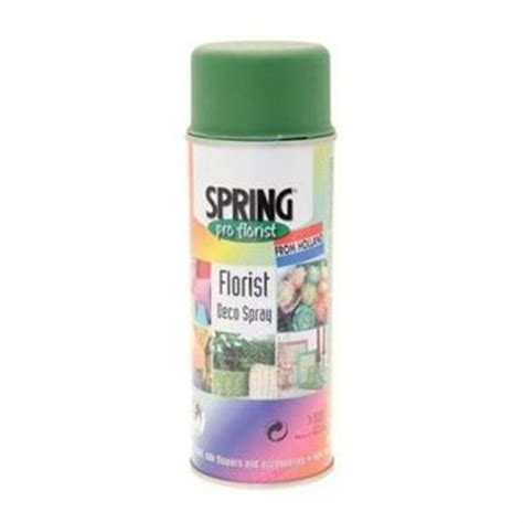 Spray Paint Olive Green Wholesale Flowers