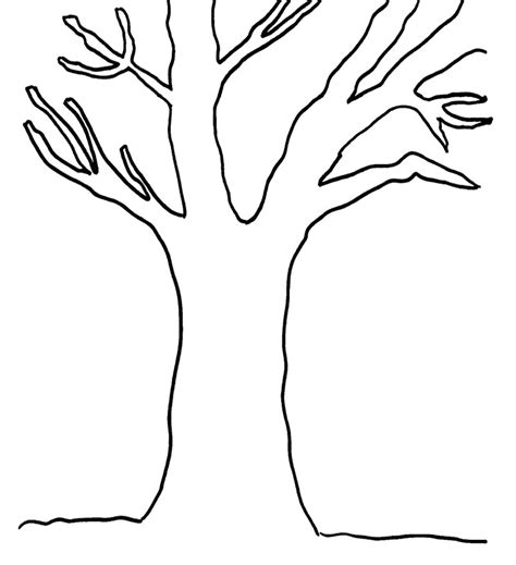 Tree Branch Coloring Page tree branches printable coloring pages