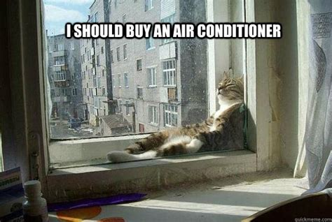 Air Conditioning Meme - sophisticated cat is feeling the heat memes quickmeme