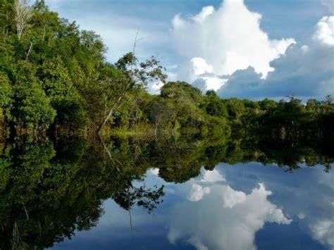 amazon brazil amazon river pictures