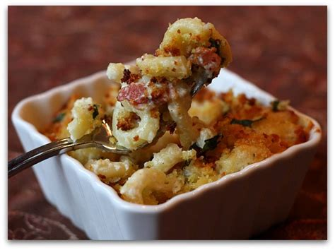 gourmet mac and cheese recipe the best macaroni and cheese recipe