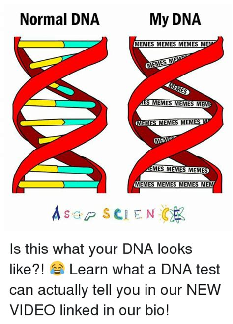 Dna Meme - funny dna memes of 2017 on sizzle testes