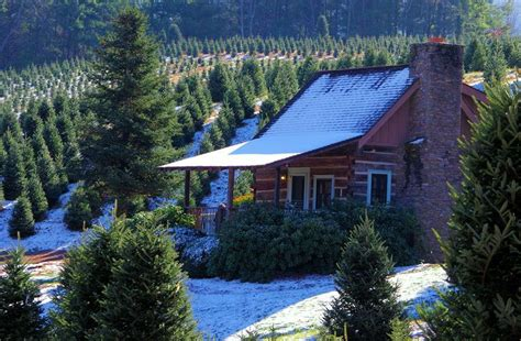17 best ideas about carolina cabins on