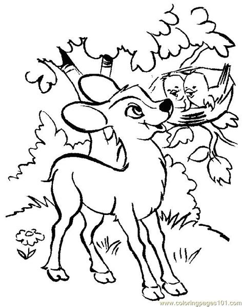 coloring pages of cute deer coloring pages of deer az coloring pages