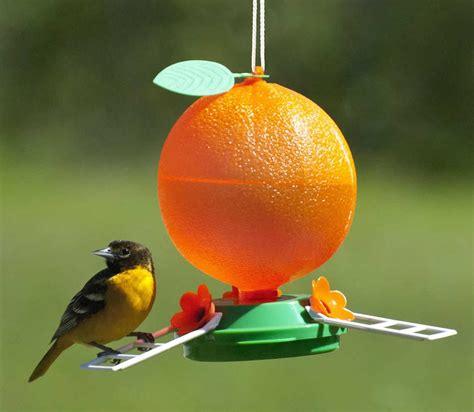 bird feeders for orioles birdcage design ideas