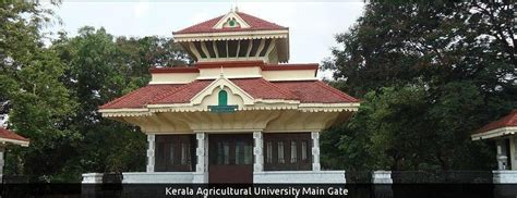 Mba In Agriculture In Kerala by Kerala Agricultural Recruitment 2018 2019 Kau