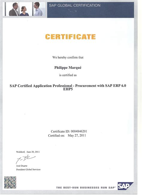 movement pattern analysis consultant certificate sap mm certified consultant resume resume ideas
