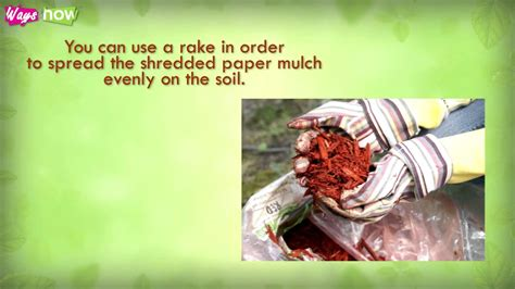 How To Make Paper Mulch - how to make mulch from shredded paper