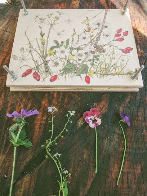 floral decoupage dried flower decoupage the diy