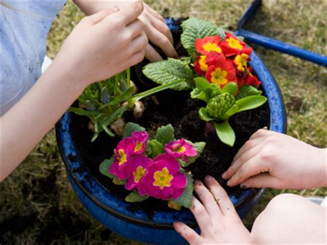 fall flower planting for kids fun family crafts