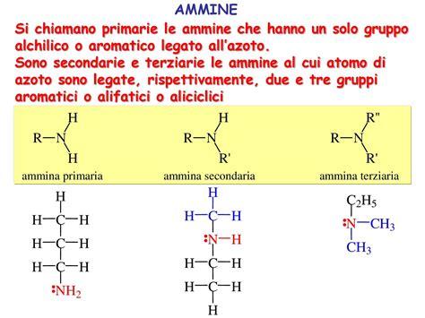 dispense biochimica chimica e propedeutica biochimica ammine dispensa