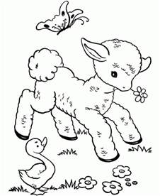 Baby Sheep Coloring Pages free printable sheep coloring pages for