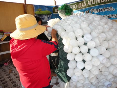 acornos echos de material reciclable plaza de armas luce espectacular con adornos navide 209 os