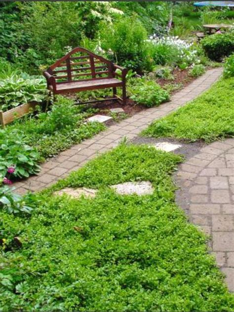 replacing  lawn  landscaping diy