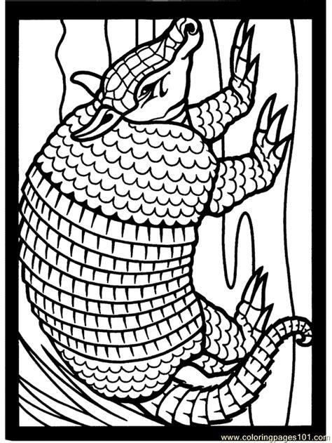 mexican coloring armadillo2 coloring page free armadillo