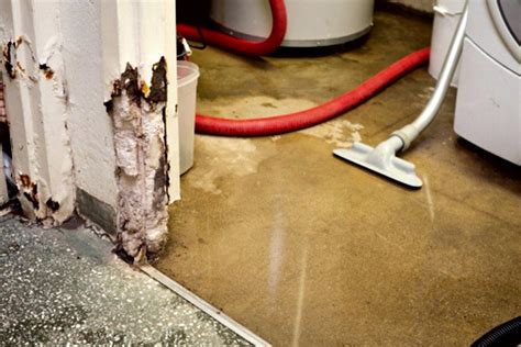 flooded basement cleaning tips how to build a house