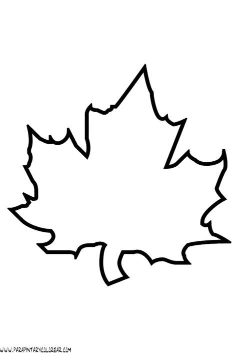 imagenes para colorear hojas dibujo hoja arbol imagui