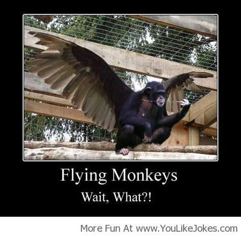 Flying Monkeys Meme - quotes about flying monkeys quotesgram