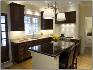 Kitchen Wall Colors With Dark Cabinets by Kitchen Wall Colors For Dark Cabinets Painting Best