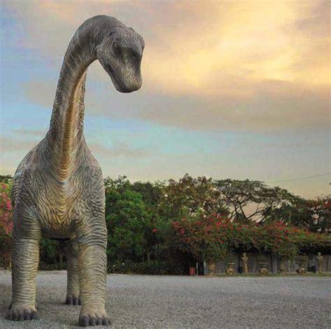 gambar gambar dinosaurus