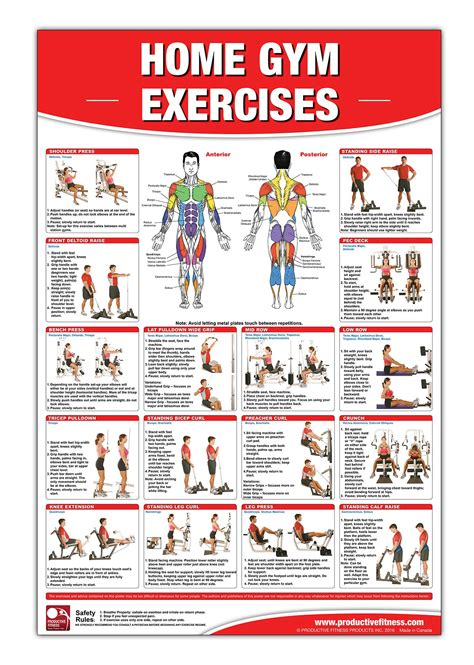 home weight bench workout routine home fitness exercise chart multi gym chart wall chart