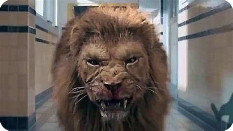 lion film pictures prey lion movie www pixshark com images galleries with