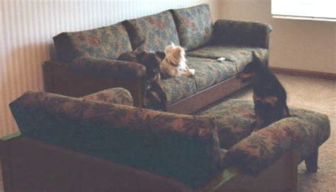 Pet Friendly Fabric For Sofa by Pet Resistant Cat Or Friendly Furniture Sofas And Chairs