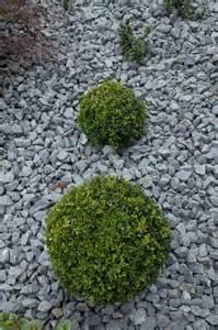Gartengestaltungsideen Mit Kies Gartengestaltungsideen Mit Kies Gartens Max