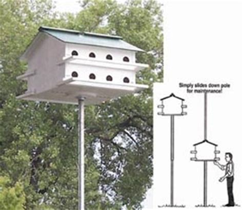 martin house plans simple purple martin house www imgkid com the image kid has it