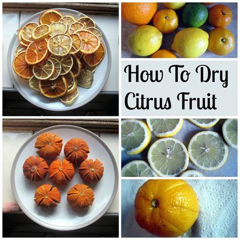 33 best dried fruit diy images on pinterest dried fruit