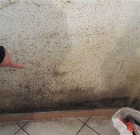 muffa nell armadio eliminare la muffa dai muri di casa fabriziorisolve