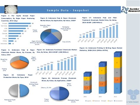 Paper Chemicals - indonesia pulp and paper chemicals market forecast and