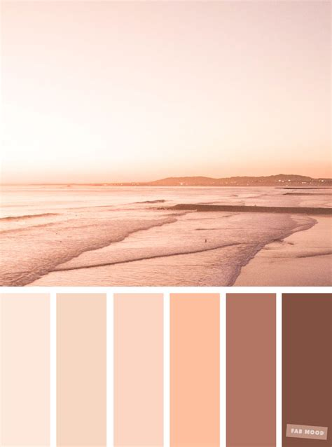 blush colors blush tones pretty blush color schemes shades of blush